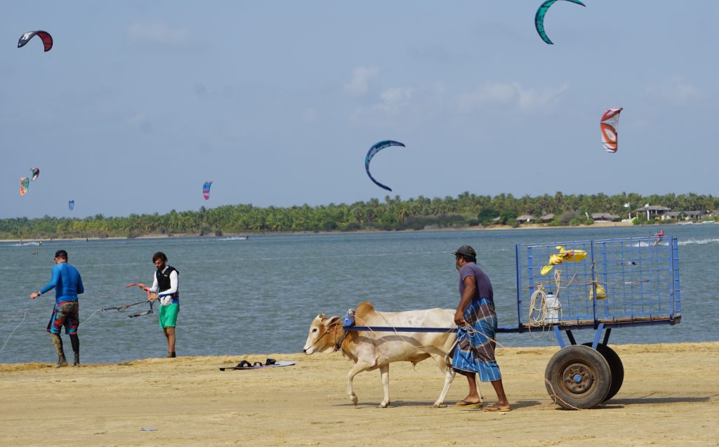 Best kite schools in Kalpitiya - Sri Lanka